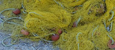 aegina-sevärdheter-fiskmarknad-småbilder